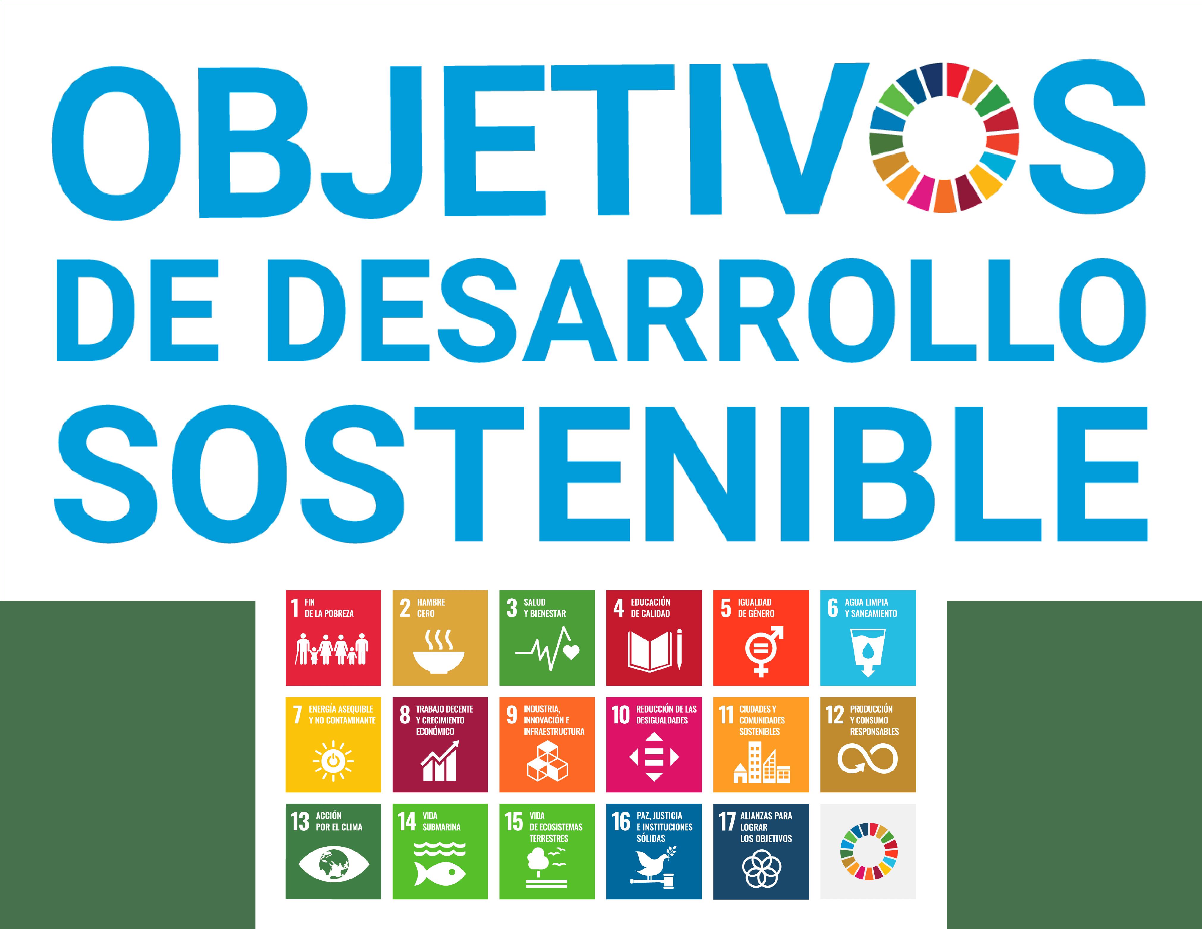 ¿Qué son los ODS?